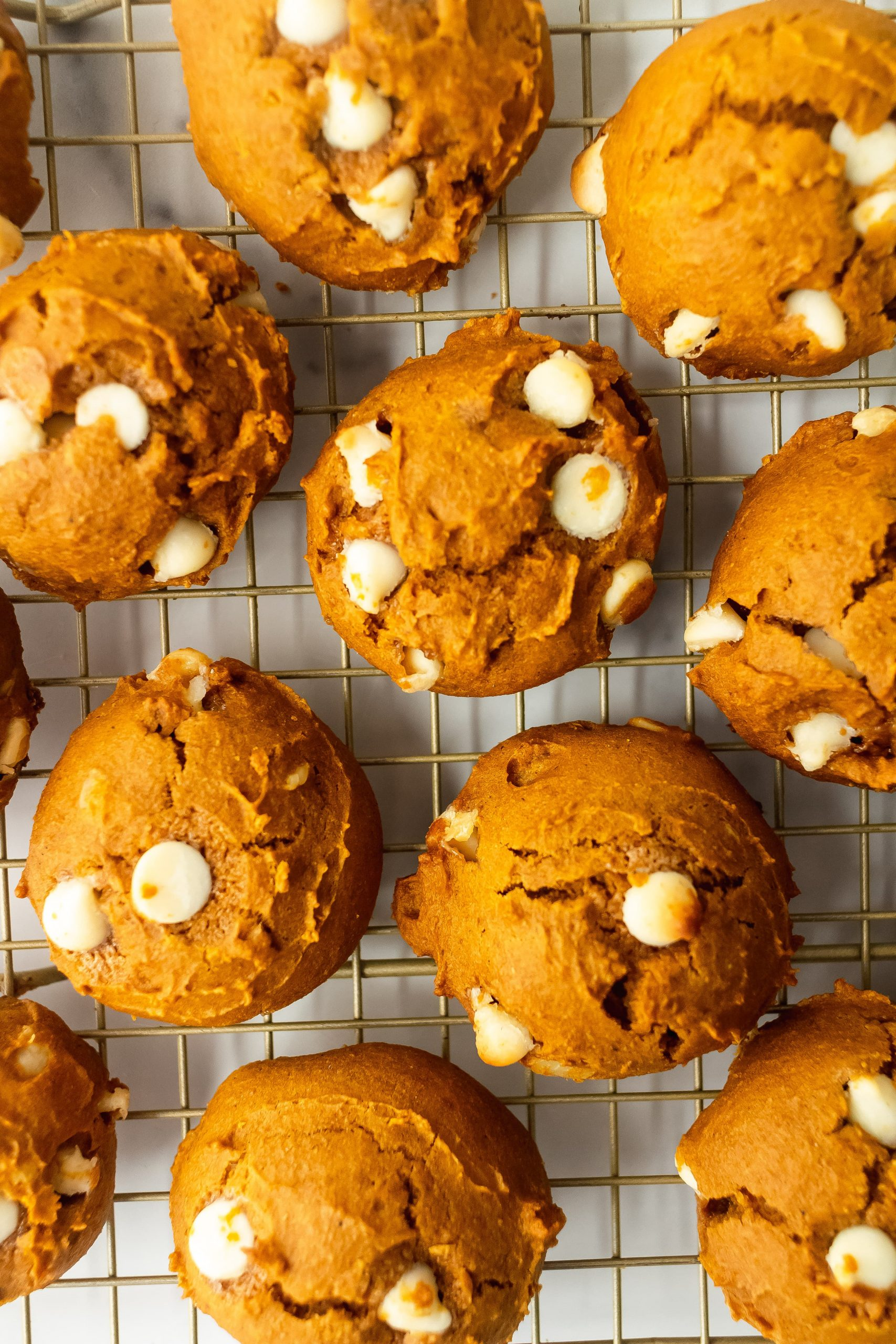 pumpkin bread cookies with chocolate chips