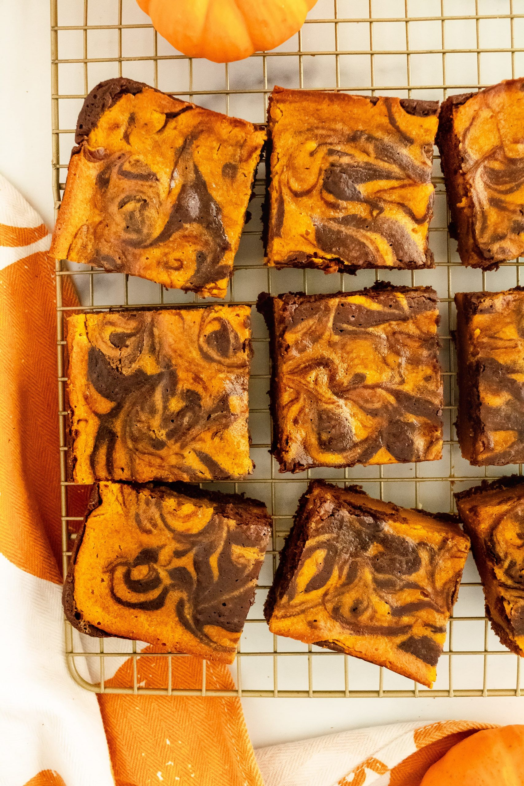 best pumpkin swirl brownie recipe with canned pumpkin and cocoa