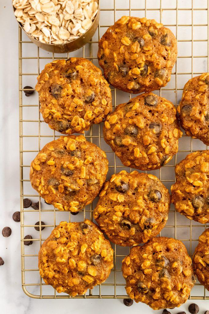 pumpkin dark chocolate oatmeal cookies